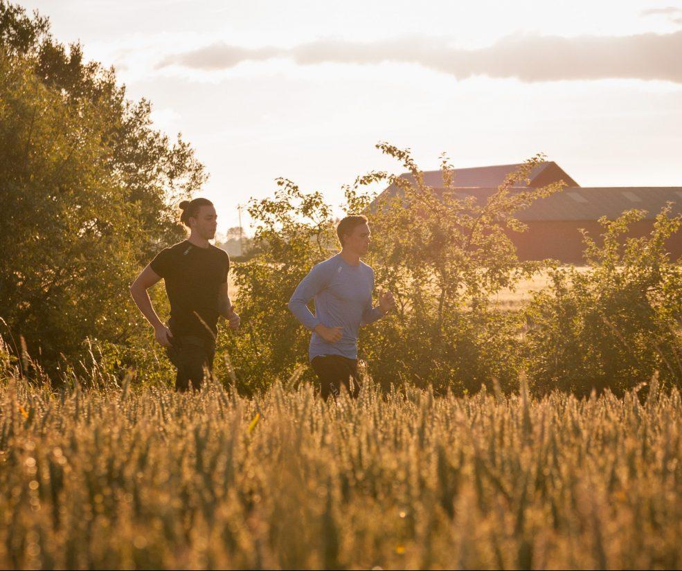 Springa i solnedgång